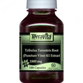 Extra Strength Tribulus terrestris Root 4- 1 Extracto (Punción de la vid) - 450 mg (100 cápsulas ZIN- 511102)