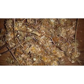 Árnica (Arnica montana) 1-2 oz (1-1.5 tazas) Secado Curación pomadas Moretones Dolor
