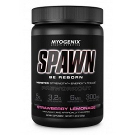 SPAWN PRE WORKOUT 325 GRAMOS