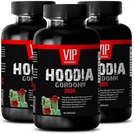 HOODIA GORDONII EXTRACTO 2000 3 FRASCOS 180 COMPRIMIDOS