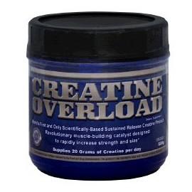 CREATINE OVERLOAD (600GR)