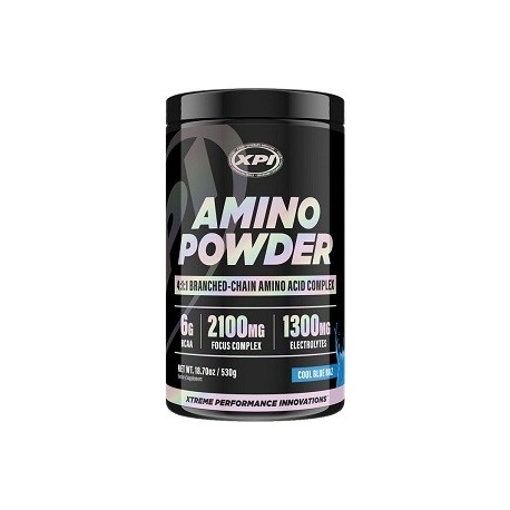 AMINO POWDER 530 GRAMOS