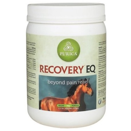 Recovery EQ 2.2 lbs