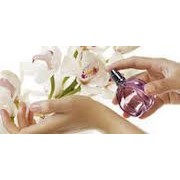 Perfumes Sexuales Mujer