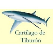CARTILAGO DE TIBURON